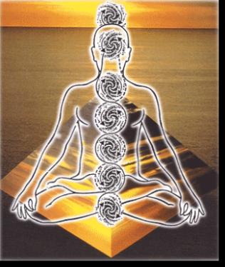 Con hatha yoga si intende una serie di esercizi di origini